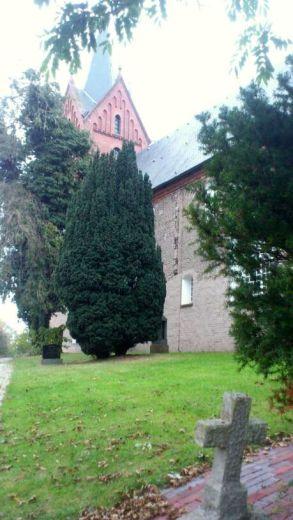 arle-kirchhof-mit-grabstein