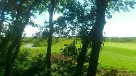 Blick auf Golfplatz