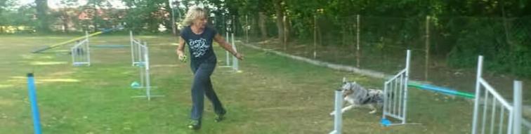 Jodie im Parcour 3
