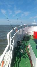 Bereit zum Fang - Hochformat