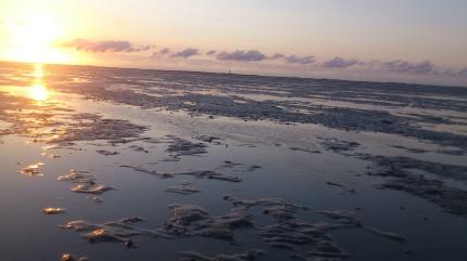 Wattenmeer im Abendlicht
