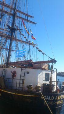 Das Schiff_DSC_2521