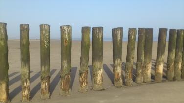 Strandgang Wangerooge
