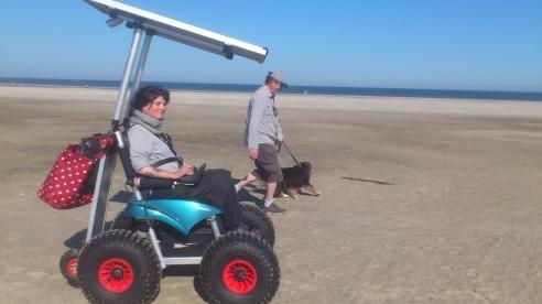 am strand mit mann und hund