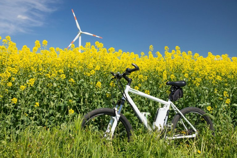 E-Bike im Rapsfeld